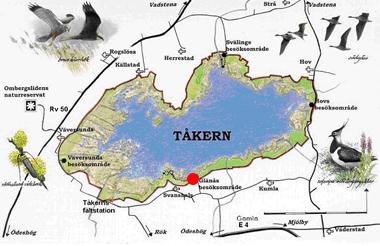 karta Tåkern