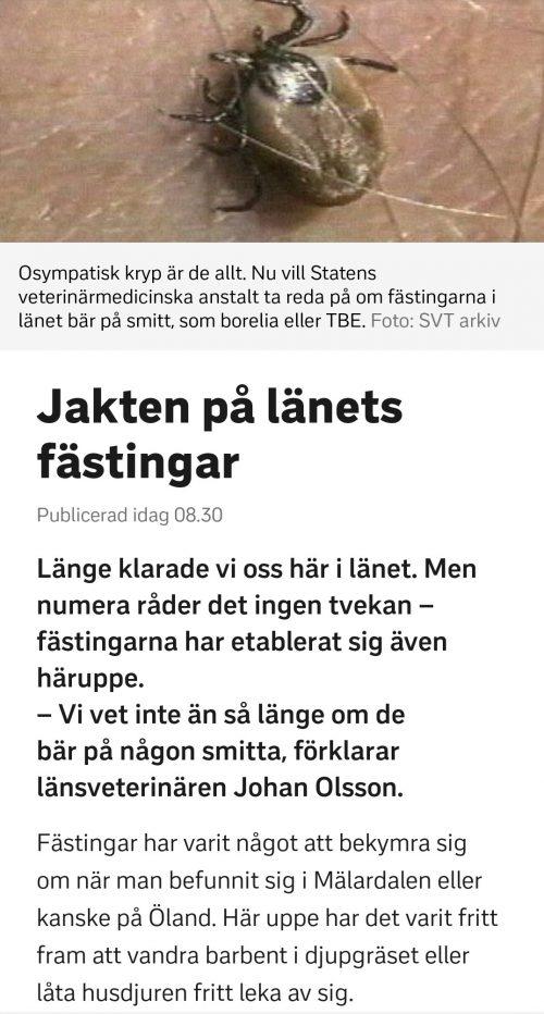 Screenshot_20190718-114637_SVT Nyheter